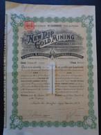 AFRIQUE DU SUD - TRANSVAL - LONDRES 1902  - THE NEW RIP GOLD MINNING - TITRE DE 1 ACTION DE 1 £ - Ohne Zuordnung