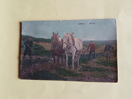 LOT  10  CPA    AGRICULTURE   SERIE  ELD       VUES  DIVERSES - Unclassified