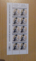 A.Buzin 4925 Brilduiker Vel - 1985-.. Vogels (Buzin)