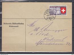 Brief Van Wadenswil Naar Wadenswil - Briefe U. Dokumente