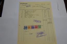 PONTELUNGO  --- PISTOIA  ---   FRATELLI LOTTI  --ORTICOLTURA - Italy