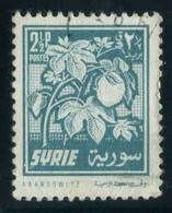 Syria - Cotton   Plants (Flora)   Agriculture - Sonstige