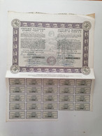 """GRECE GREECE  SHARE """"ANONYMOUS MARITIME COMPANY OF NAXOS"""".NAXOS 1974 WITH 23 COUPONS . VERY GOOD CON. - Zonder Classificatie"""