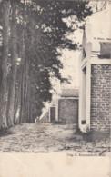 MOL / DE 15 KAPELLEKES 1906 - Mol