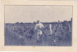 VIGNES AMERICAINES Et Franco-Américaines :Propriétaire-Viticulteur  A.LAFFERRIERE à Villeneuve Près De Blaye (Gironde) - Visiting Cards