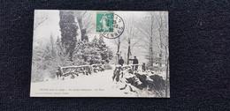 Cp 08 Ardennes SEDAN Sous La Neige Au Jardin Botanique Le Pont ( En Hiver Bois Hommes ) - Sedan