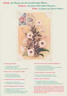 Thematik: Tiere, Fauna / Animals, Fauna: 1983, Burundi. World Conservation: ANIMALS. Complete Set (1 - Tabak