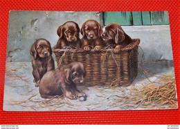 FANTAISIES -  CHIENS  -  DOGS -  Chiots Dans Un Panier - Chiens