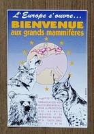 AUTOCOLLANT - BIENVENUE AUX GRANDS MAMMIFÈRES - PROTECTION ANIMAUX SAUVAGES - LOUP OURS LYNX - LORIOL - Stickers