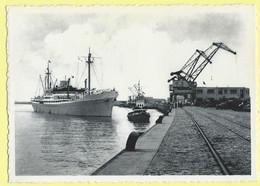 2996 - BELGIE - BELGIUM - ZEEBRUGGE - ACCOSTAGE DE M/V MAR DEL PLATA - Zeebrugge