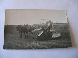 Photo Carte Postale Attelage Avec Faucheuse Lieuse MOLINE ADRIANCE De 1922 - Attelages