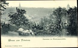 CPA Potsdam In Brandenburg, Panorama Von Wackermannshöhe - Otros