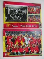 EURO Spain European Champions - Soccer