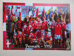 EURO Denmark European Champions - Soccer
