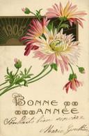 Carte Gaufrée 1905  Fleurs BONNE ANNEE Pionnière RV Timbres 1c X5 - Andere