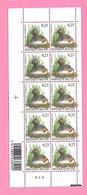 5482  -+-  BELGIQUE - 2006  N°  3546  Oiseaux De Buzin  Bloc De 10 Timbres  Neufs - Collections