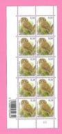 5484  -+-  BELGIQUE - 2009  N°  3956  Oiseaux De Buzin  Bloc De 10 Timbres  Neufs - Collections
