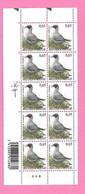 5497  -+-  BELGIQUE - 2004  N°  3268  Oiseaux De Buzin  Bloc De 10 Timbres  Neufs  (SIGNe BUZIN) - Collections