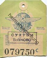 Baggage Strap Tag - Gepäckanhänger - Aeroflot - Unclassified