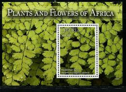 CR0548 Liberia 2016 Africa Endemic Plant Leaf M - Sonstige