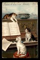 ANIMAUX - CHATS AU PIANO - Gatos