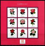 CR0554 Ghana 2013 Camellia S/S - Sonstige