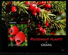 CR0556 Ghana 2016 Endemic Plant M - Sonstige