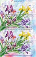 Russia 2021 Flora  Flowers  Irises Miniseet MNH - Ohne Zuordnung