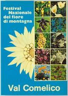 97977 - ITALY - Postal History - Special Postmark & POSTCARD 1977 MOUNTAIN Flowers - Sonstige