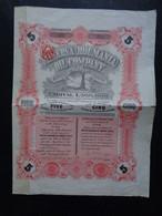 ROUMANIE  - MINERVA  (ROUMANIA) OIL Co. - TITRE DE 5 ACTIONS DE 1 £ - LONDRES 1924 - Zonder Classificatie