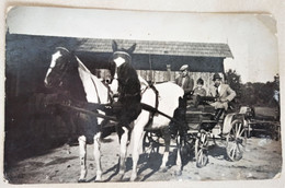 Romania   - PC Size -  Somewhere In The Country - Horses - Atelage-  FR0033 - Personas Anónimos