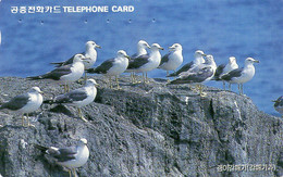 SOUTH KOREA - AUTELCA - ANIMALS BIRDS - BLACK TAILED GULL - J - Korea, South