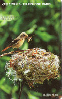 SOUTH KOREA - AUTELCA - ANIMALS BIRDS - FLYCATCHER - K - Korea, South