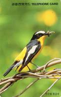 SOUTH KOREA - AUTELCA - ANIMALS BIRDS - FLYCATCHER - J - Korea, South