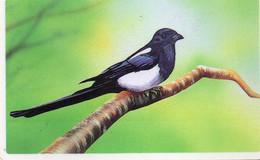 SOUTH KOREA - AUTELCA - ANIMALS BIRDS - MAGPIE WHITE LINE (WRITTEN ON BACK) - Korea, South