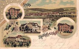 80506- Litho Gruss Aus Treuchtlingen Mit Schloss Innere Ansicht 1898 - Weissenburg