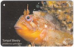 JERSEY A-564 Magnetic Telecom - Animal, Sea Life, Fish - 80JERA - Used - [ 7] Jersey Und Guernsey