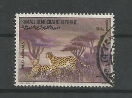 Somalia 1971 Leopard Y.T. 135 (0) - Somalia (1960-...)
