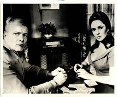 Brian Keith And Elisabeth Taylor REFLECTIONS IN A GOLDEN EYE 1967 +-20*25.5cm JOHN HUSTON FILM DIRECTOR CINEMA - Beroemde Personen