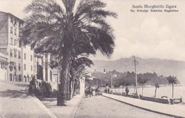 SANTA MARGHERITA LIGURE (GENOVA) CARTOLINA - SANTA MARGHERITA LIGURE - VIA PRINCIPE FEDERICO GUGLIELMO - Genova