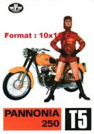 Reproduction D'une Photographie D'une Publicité Ancienne Pannonia 250 T5 - Riproduzioni