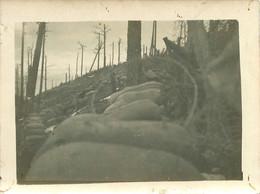 170621 - PHOTO Guerre 14 18 WW1 - 68 VOSGES Sommet Du Linge Col 1915 1916 Tranchée Poilu - Autres Communes