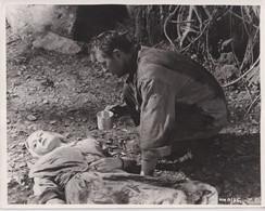 Deborah Kerr And Robert Mitchum  HEAVEN KNOWS MR. ALLISON 1957 +-20*25.5cm JOHN HUSTON FILM DIRECTOR CINEMA - Beroemde Personen