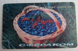 Magadan. Spherecom. Berries. - Russia