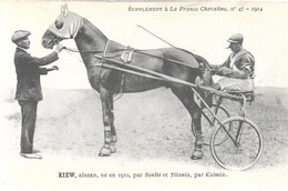 Superbe Lot De 50 Cpa De France Grosse Animations - 5 - 99 Postcards