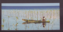 """Carte ( 23 X 10.5 Cm ) """" Pêcheurs De La Mangrove, île De Bohol, Philippines """" Par Philippe Body - Andere Fotografen"""