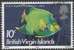 British Virgin Islands. 1975 Fish. 10c Used. SG 335 - British Virgin Islands