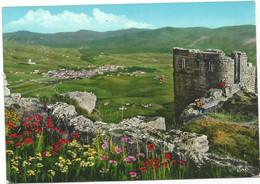 R4229 Asiago (Vicenza) - Panorama Da Forte Interrotto - Fiori Fleurs Flowers / Viaggiata 1964 - Autres Villes