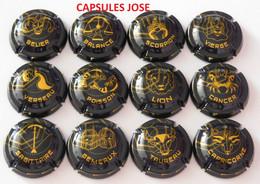 Série De 12 Capsules De Champagne GENERIQUE (Astrologie) - Collections