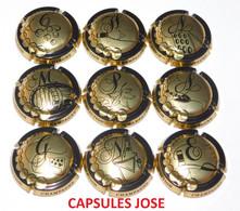 Série De 9 Capsules De Champagne GENERIQUE (Puzzle Champagne) - Collections